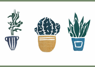 Dans la vie, il y a des cactus